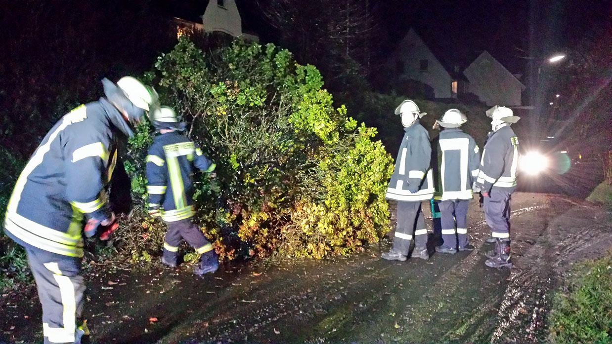 Die Feuerwehr musste infolge von Orkan Xaver am Donnerstagabend zwei umgestürzte Bäume beseitigen. (Foto: Feuerwehr Sundern)