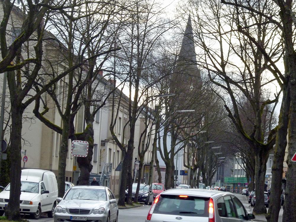 Diese alten Linden an der Möhnestraße werden erst im Frühjahr 2015 unmittelbar vor Beginn der Bauarbeiten gefällt. (Foto: oe)