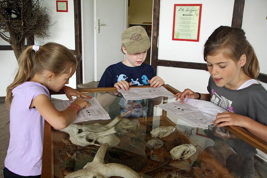 das Ausfüllen der Fragebögen bei der Osterhasenrallye im Wildwald Voßwinkel macht den Kindern viel Spaß. (Foto: Wildwald Voßwinkel)