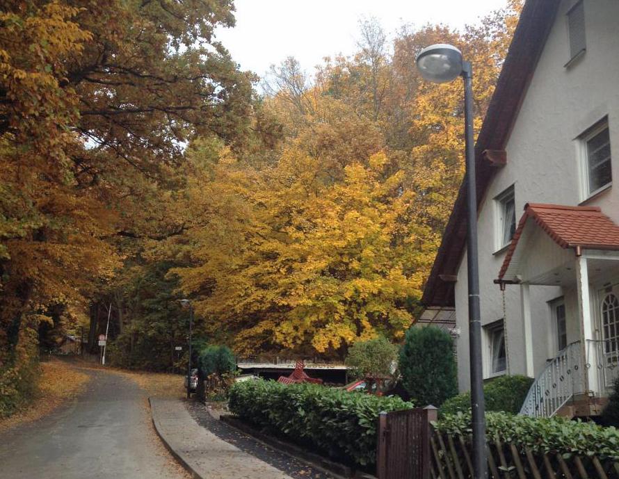 Einer von zwei neuen beleuchtungsmasten, die jetzt den Fußweg ins Bruchhausener Wohngebiet Hude sicherer machen. (Foto: CDU)