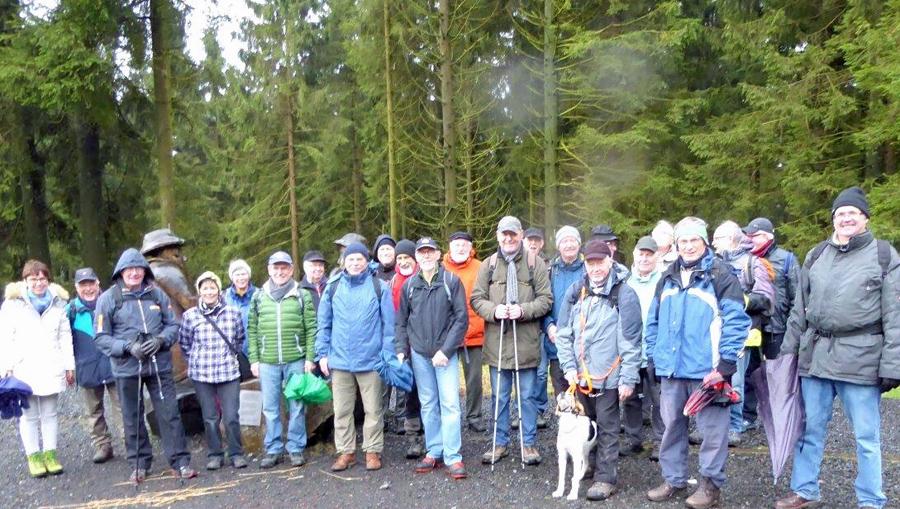 Die 10.10-Wandergruppe des SGV Arnsberg in der Nähe des Lörmecketurms.  (Foto: Heinz Beleke)