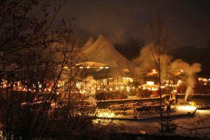 Blick auf den Waldweihnachtsmarkt. (Foto: Wildwald)